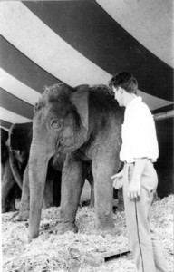 Julien-Blaine_interview-with-an-elephant--1962